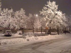 neve-fidenza